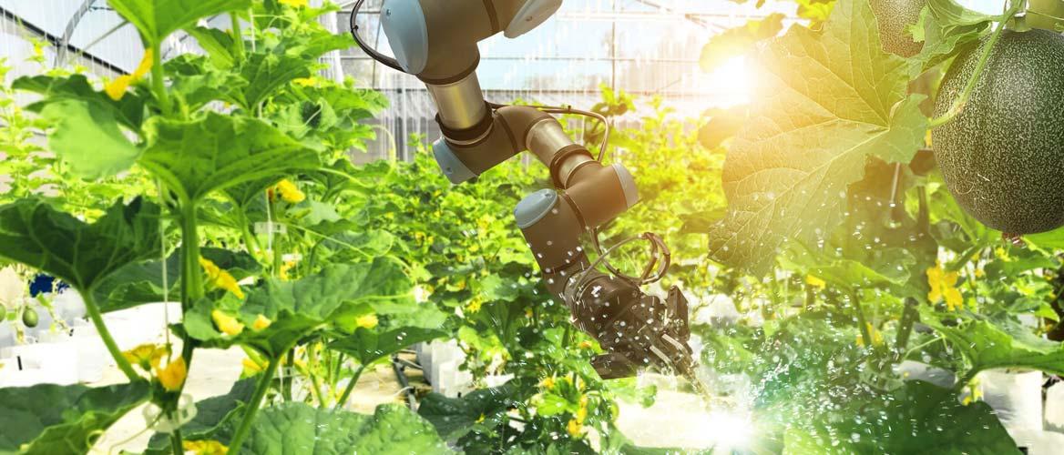 Smart robotica in agriculture